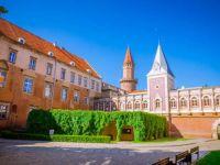 Gothic Piast Castle