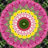 kaleidoscope 316 pink and yellow small