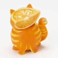 Orange kitty for the kids