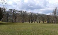 V zámeckém parku-SRN