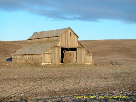 Lonely Old Barn