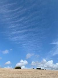 Seaside Sky