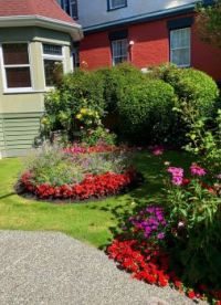 A flowerbed in the James Bay area of Victoria BC