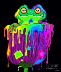 Painted Flower Frog by Nick Gustafson