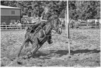 Little Girl; Big Horse; Pole-Bending