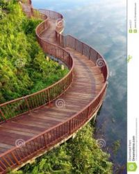 lakeside-nature-walk-way-photograph-showing-beautiful-curving-wooden-board-walkway-tropical-park-natural-style