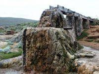 Old water wheel, now calcified, Cape Leeuwin, Western Australia