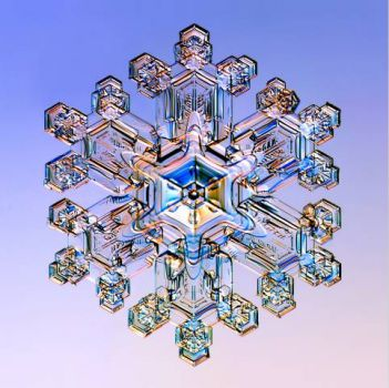 Snow Crystal by Dr. Kenneth Libbrecht