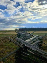 jo - g'burg fence small