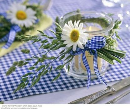 Blue gingham and daisies