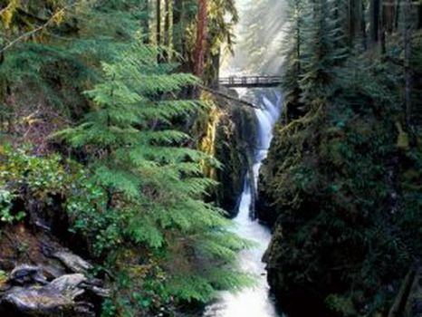 Sol Duc Falls, Washington (4)