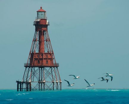 American Shoal lighthouse off the lower Florida Keys by Andy Newman