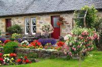 Garden Full Of Living Life