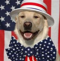 National Dog in Politics Day