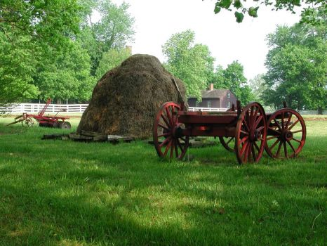 Wagon at Shakertown, KY