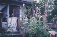 The back of our old house, about 1993.