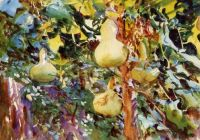 """Gourds"" (c1908) by John Singer Sargent."