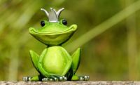 A Cute and Royal Froggy