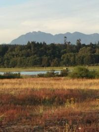 Iona, near the Vancouver airport