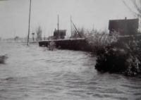 Our garden after the flood 1953