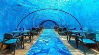 Undersea Restaurant, Laccadive Sea, Maldives