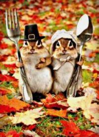 We'll bring nuts