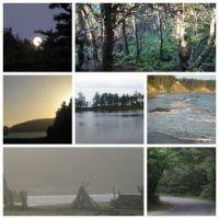 Port Orford, Oregon collage