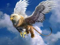 flying gryphon