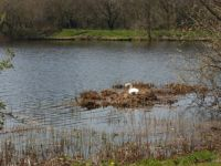 its a hard life siting here all day wondering if we will all be swept away