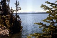 1975 Yellowstone Lake