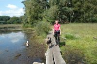 Daughter Sylvia with her dog Bobbie (4 year old Border Terrier)