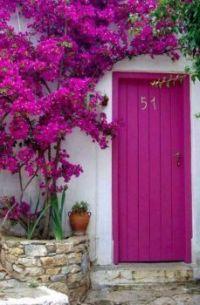#51's Front Door
