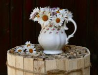 Wooden Barrel & Daisies In White Vase