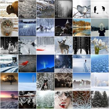 Mosaics of Winter