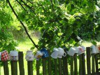 Mugs on the fence_2