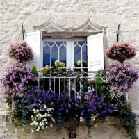 Balcony and flowers in charming display