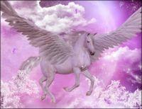 Horse Angel (large)