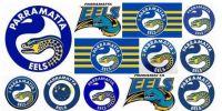 eels2
