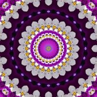 kaleidoscope 386 purple and white large
