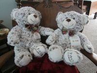 Darling bears