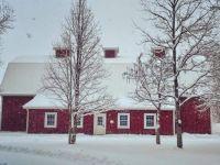 Hudson Gardens in winter