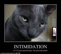 intimidator
