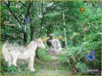 Unicorns Three (Ex. Small)