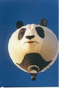 panda_balloon
