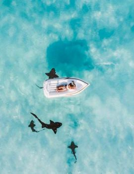 Floating over nurse sharks, Great Exuma, Bahamas