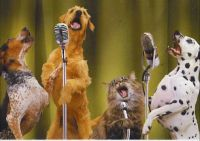 dogs and cat singing