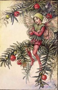 The Yew Fairy