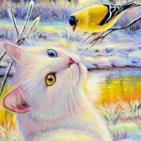 Bi-Eyed White Cat and Goldfinch