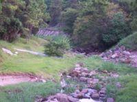 Trailwood Village Bayou