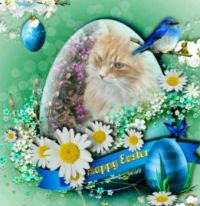 Happy Easter to all Jigidi friends from Max ♥♥♥